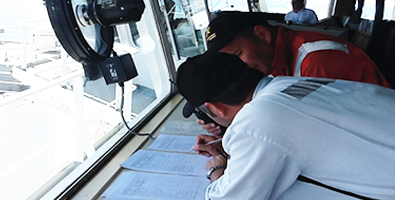 Pilotage and mooring masters