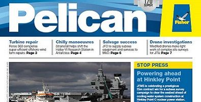 Pelican_summer_newsletter_395_x_200.jpg